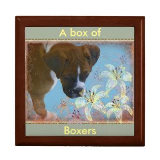 Boîte À Souvenirs Boxeur de ~ de boîte de mémoire