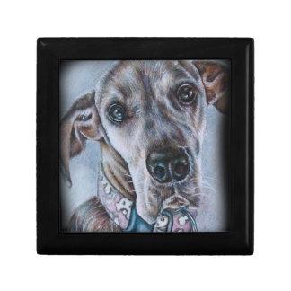 Boîte À Souvenirs Conception de dessin de chien de great dane