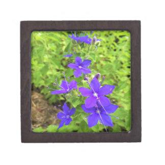 Boîte À Souvenirs De Première Qualité flower6.JPG