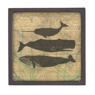 Boîte À Souvenirs De Première Qualité Illustration vintage de baleine antique rustique