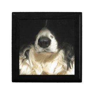 Boîte À Souvenirs Fin du nez de chien