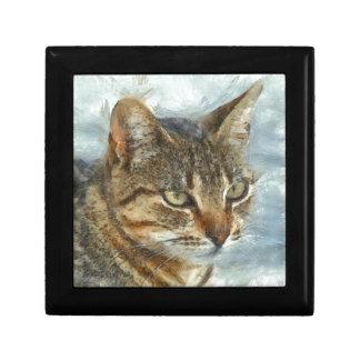Boîte À Souvenirs Fin renversante de chat tigré vers le haut de