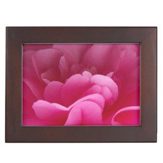 Boîte À Souvenirs Fin rose de fleur de camélia