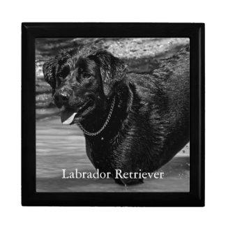 Boîte À Souvenirs Labrador retriever dans l'eau