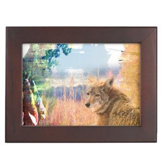 Boîte À Souvenirs Le coyote aménage le chien extérieur de parc