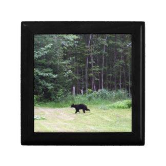 Boîte À Souvenirs Ours noir