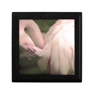 Boîte À Souvenirs plumes de flamant