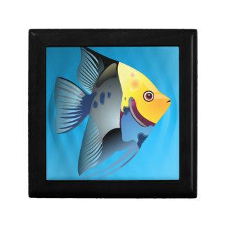 Boîte À Souvenirs poissons tropicaux