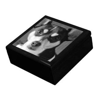 Boîte À Souvenirs Rat terrier noir et blanc