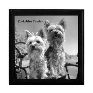 Boîte À Souvenirs Terriers de Yorkshire noirs et blancs