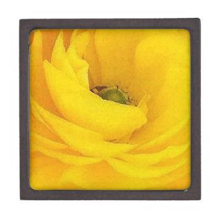 Boîtes À Souvenirs De Première Qualité Photographie florale de jardin de fleurs