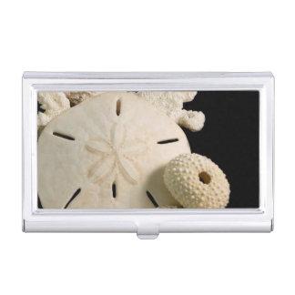 Boîtier Pour Cartes De Visite Coquillages et dollar de sable blancs