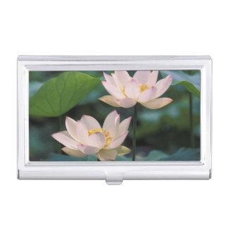 Boîtier Pour Cartes De Visite Fleur de Lotus dans la fleur, Chine