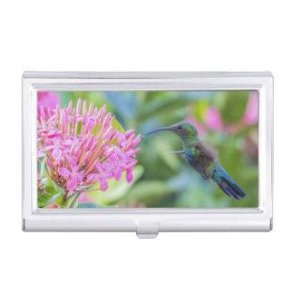 Boîtier Pour Cartes De Visite Porte-cartes Throated vert de colibri de Carib
