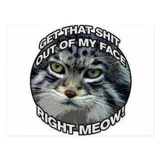 Bon Meow ! Cartes Postales