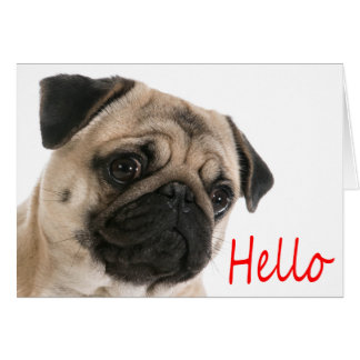 Bonjour carte de note de blanc de chiot de carlin