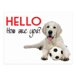 Bonjour carte postale jaune de labrador retriever