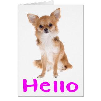 Bonjour carte pour notes de blanc de chiot de