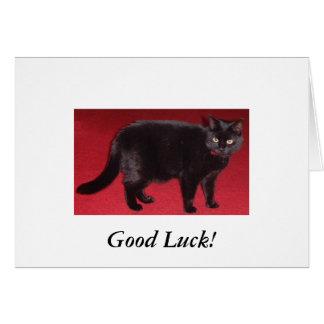 bonne chance de chat noir ! carte de vœux
