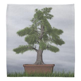 Bonsaïs d'arbre de genévrier de temple - 3D Bandana