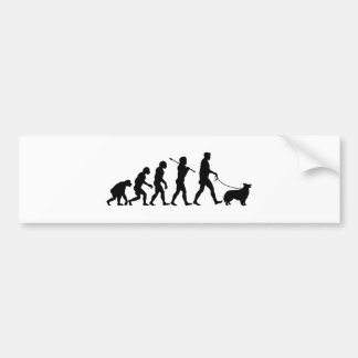 Border collie bumpersticker