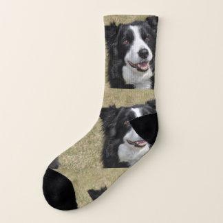 Border collie sokken