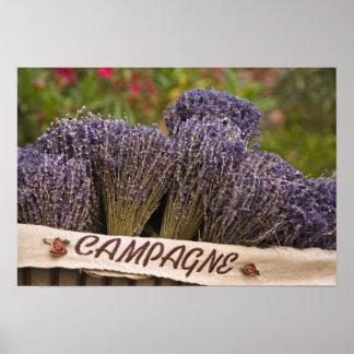Bossen van lavendel voor verkoop, Vence, de Proven Poster