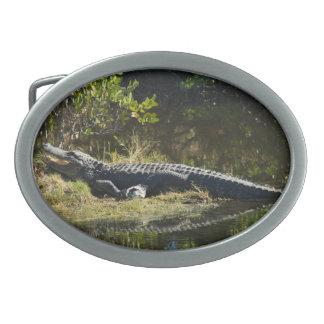 Boucle De Ceinture Ovale Alligator au soleil