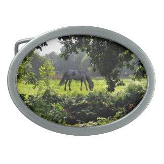 Boucle De Ceinture Ovale Nouveaux poney de forêt et forêt noirs dégageant