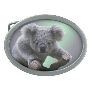 Boucle De Ceinture Ovale Ours de koala