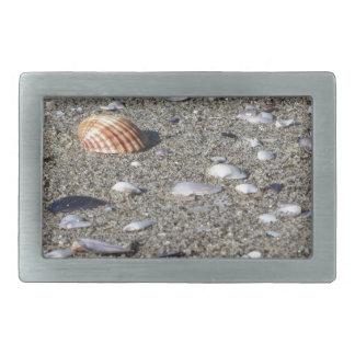Boucle De Ceinture Rectangulaire Coquillages sur le sable. Arrière - plan de plage