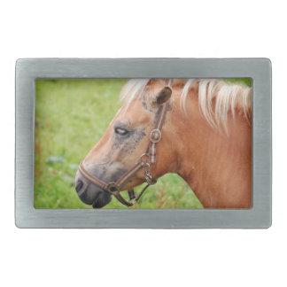 Boucle De Ceinture Rectangulaire Horsehead 003