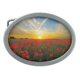 Boucles De Ceinture Ovales Horizon merveilleux de coucher du soleil de champ