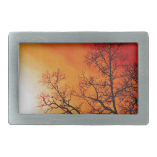 Boucles De Ceinture Rectangulaires Art ardent de coucher du soleil et de nature