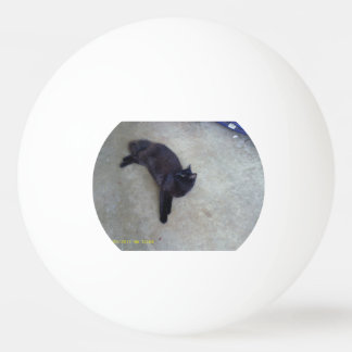 boule de ping-pong blinky balle tennis de table