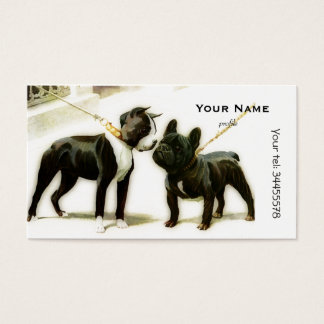 BOULEDOGUE DE BOSTON TERRIER&FRENCH CARTES DE VISITE