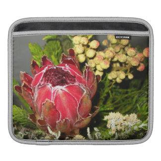 Bouquet de Protea Poches iPad