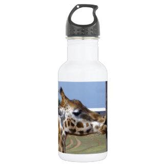 Bouteille D'eau Ride drôle de girafe vers le haut de ces lèvres,