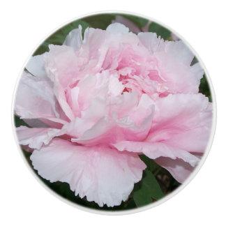 Bouton de fleur de pivoine