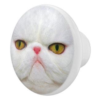 Bouton De Porte En Céramique Chat blanc