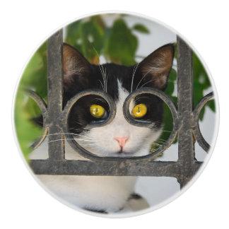 Bouton De Porte En Céramique Chat curieux avec décoratif drôle de monture de