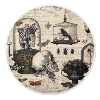 Bouton De Porte En Céramique Jardin vintage moderne de Halloween
