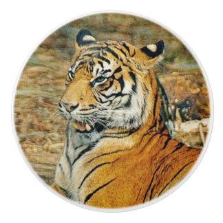 Bouton De Porte En Céramique Tigre