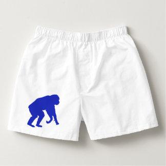 Boxeurs bleus de chimpanzé