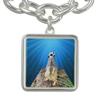 Bracelets Meerkat sur un arrière - plan étoilé bleu,