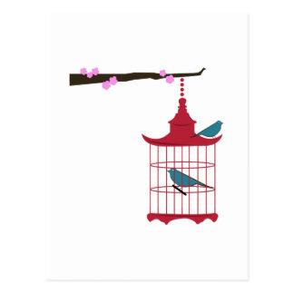 Branche de cage à oiseaux cartes postales