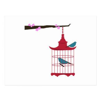 Branche de cage à oiseaux carte postale