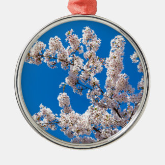 Branches d'arbre avec les fleurs blanches de ornement rond argenté