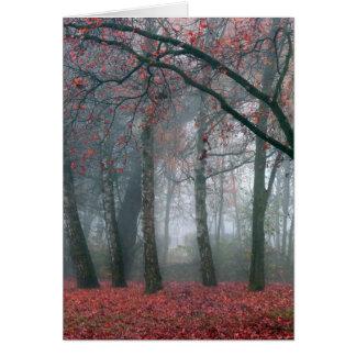 Brouillard dans la forêt d'automne avec le feuille carte