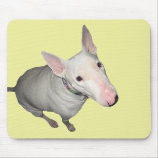 Bull-terrier anglais se reposant assez tapis de souris